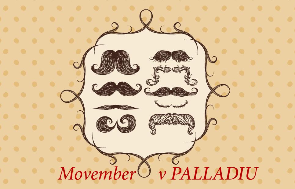 Movember v PALLADIU